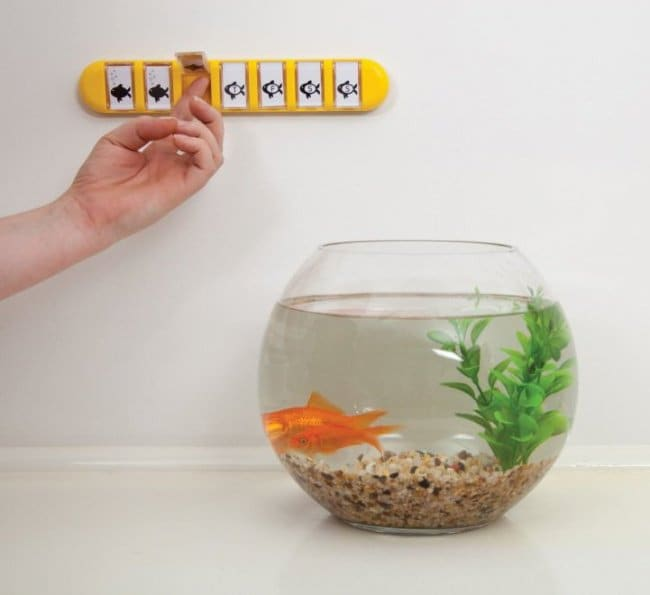 Incredibly Cool Inventions feeding fish calendar