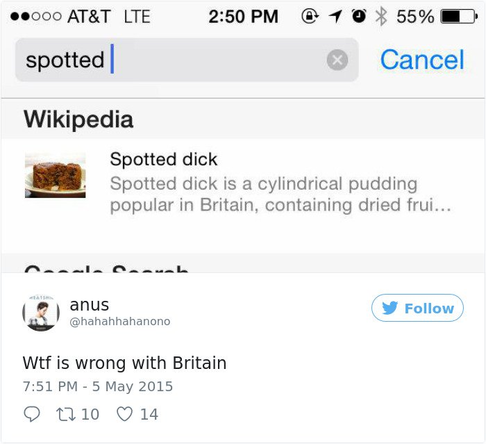 Times Americans Were Surprised And Confused By British Things spotted dick