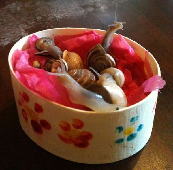 Times Kids Gave Innocent Gifts mothers day box of snails