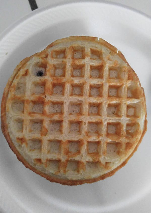Times People Lost The Food Lottery blueberry waffle