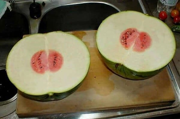Times People Lost The Food Lottery fruitless watermelons