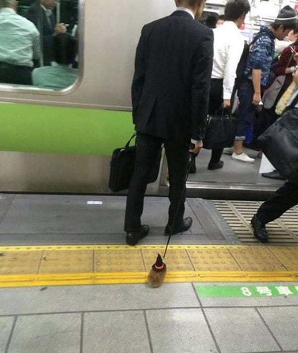 Weirdest People Ever Spotted On The Subway hamster on a lead