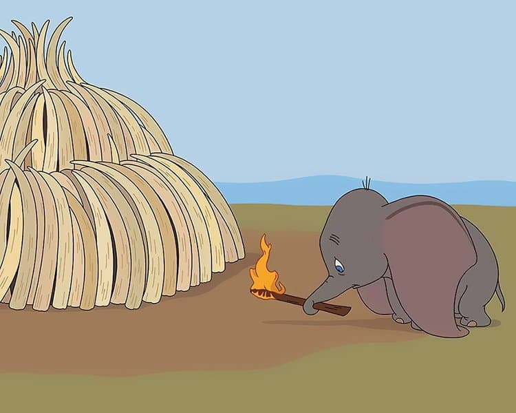 What Disney Movies Would Be Like In 2017 burning ivory