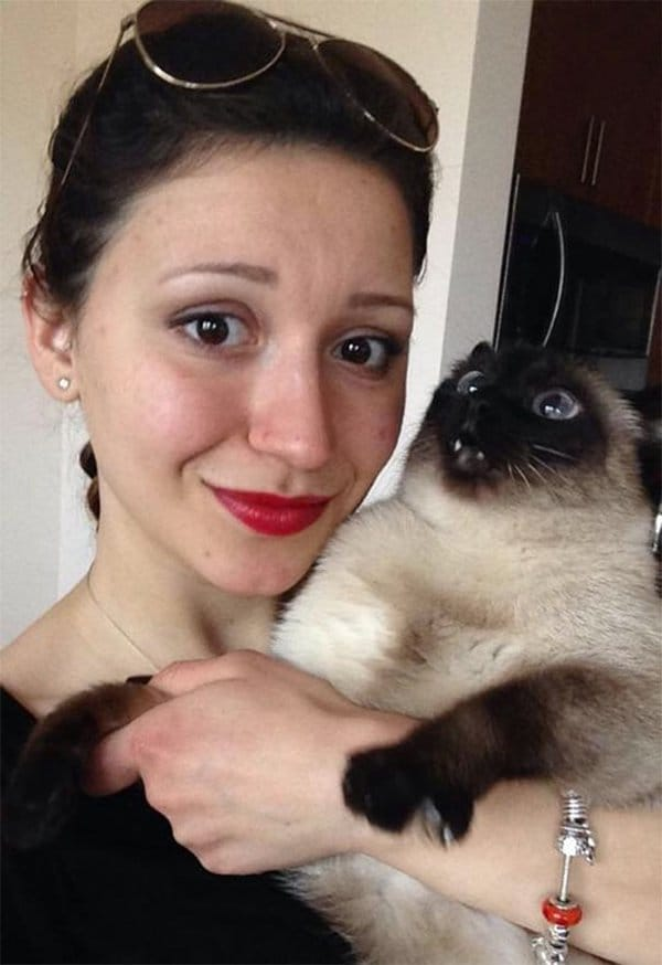 Cats Didn't Want To Be Involved In Selfies horrified