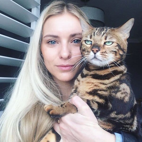 Cats Didn't Want To Be Involved In Selfies not in the mood
