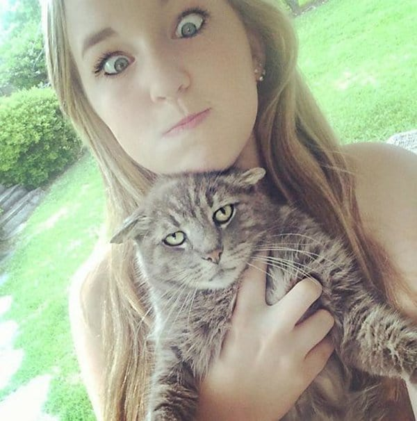 Cats Didn't Want To Be Involved In Selfies unhappy