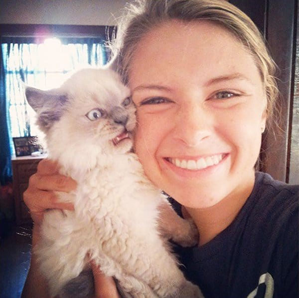 Cats Didn't Want To Be Involved In Selfies white fluffy cat