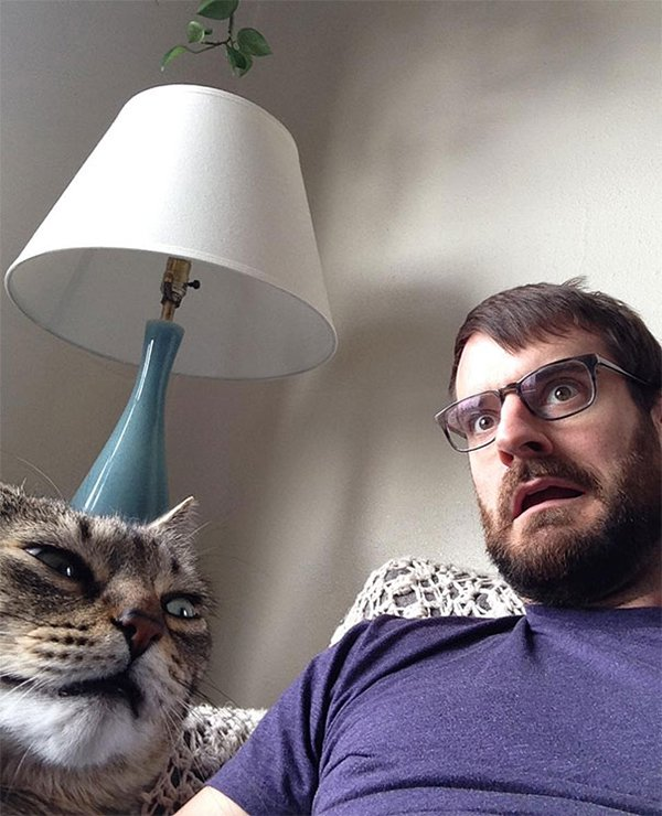 Cats Didn't Want To Be Involved In Selfies why