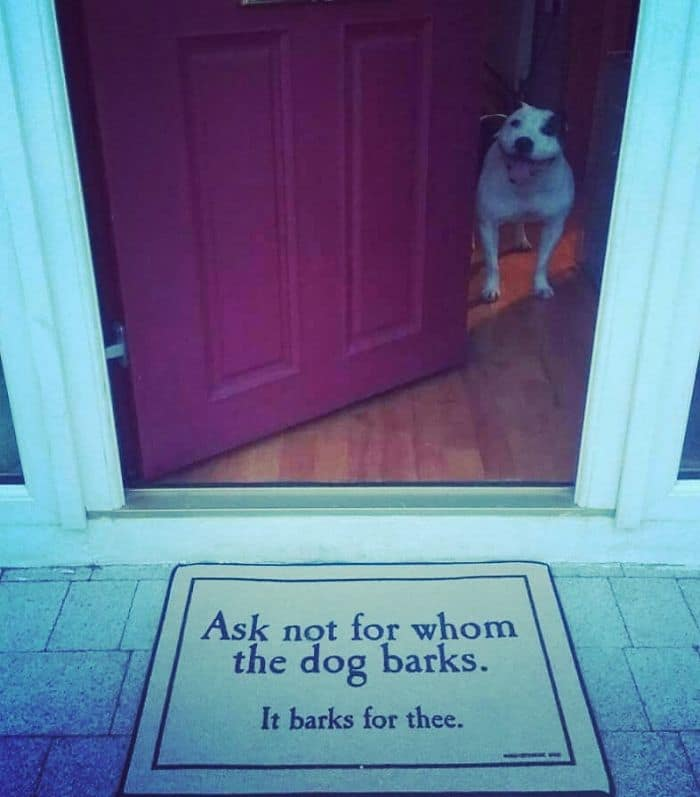 Creative And Hilarious Doormats ask not for whom the dog barks
