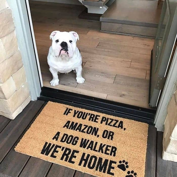 Creative And Hilarious Doormats if youre pizza amazon dog walker