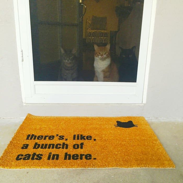 Creative And Hilarious Doormats theres a bunch of cats in here