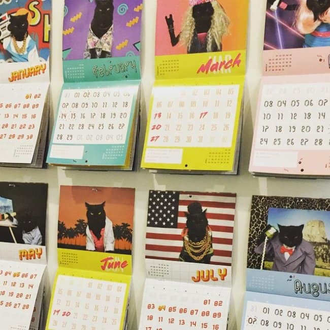 Ideas That Surprisingly Made A Ton Of Money cat calendar