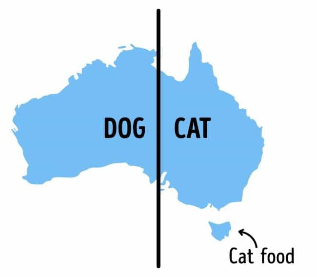 Photos That Will Make You Do A Double Take dog cat cat food map