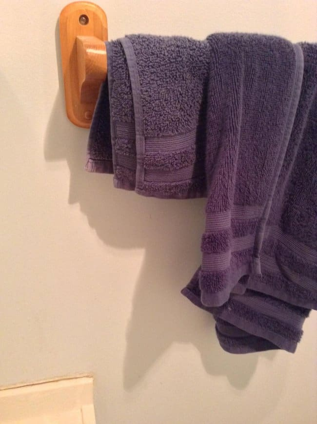 Photos That Will Make You Do A Double Take trump towel shadow