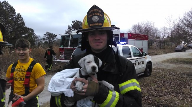 Photos That Will Make You Smile puppy rescued by firefighters