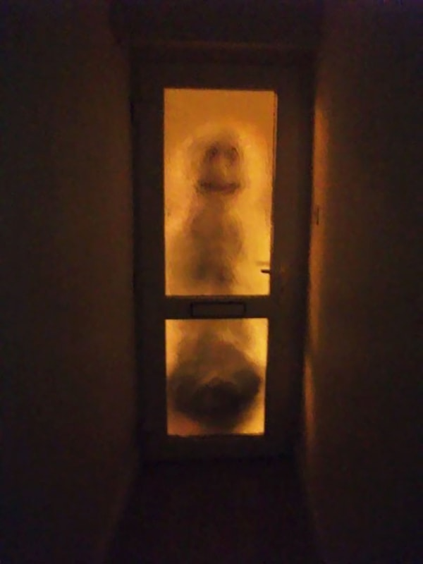 Times Living With Roommates Was The Worst snowman