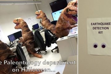 pictures-that-perfectly-sum-up-the-office-life