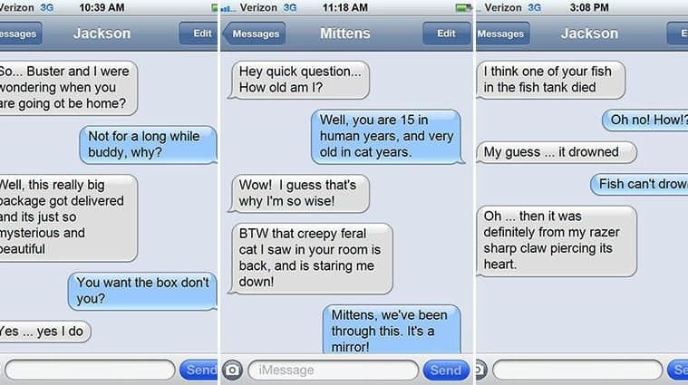 Amusing Images Showing What It Would Be Like If Cats Could Text