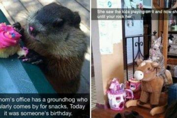 Hilarious Animal-Related Snapchats