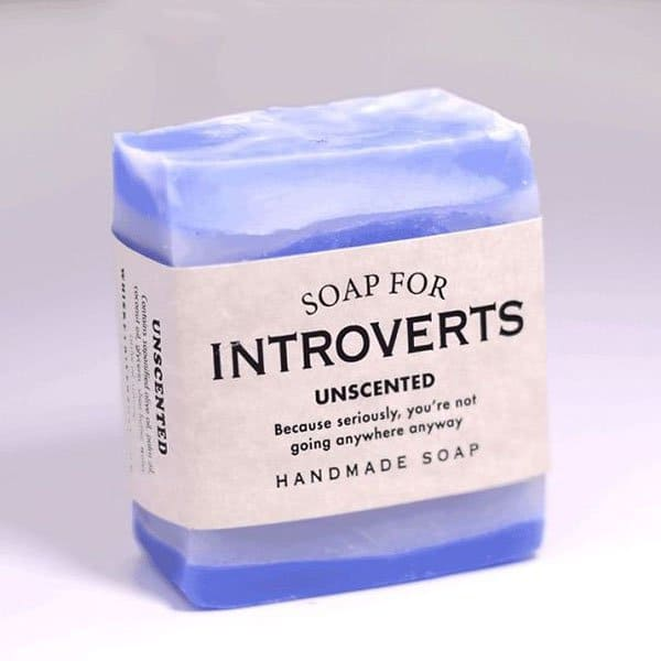 Hilarious Soaps introverts