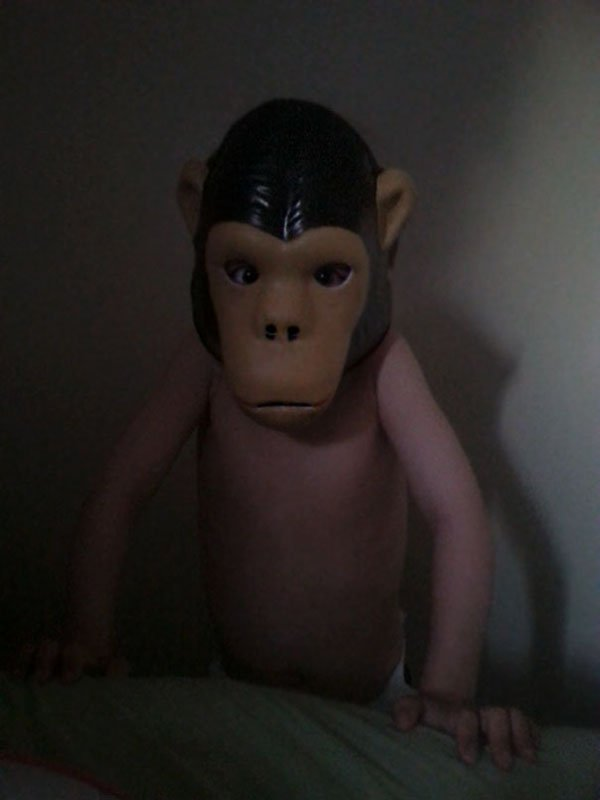 'I Woke Up To This' Moments kid wearing monkey mask