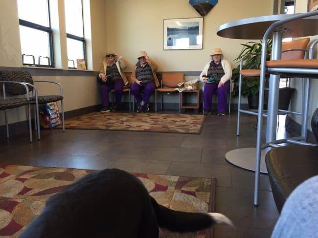 Interesting Photos three ladies dressed the same