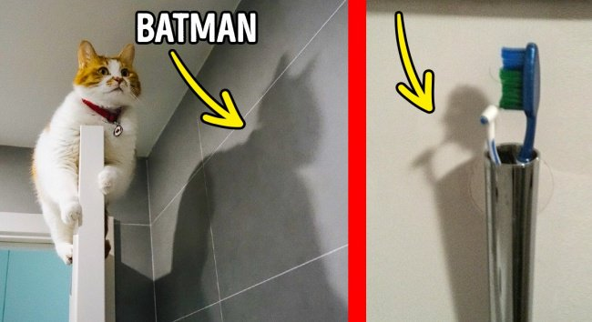 Photos That Will Trick Your Brain shadows