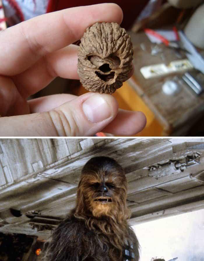Pop Culture Icons In Disguise chewbacca walnut