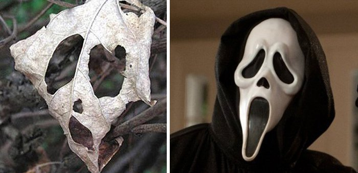 Pop Culture Icons In Disguise leaf scream mask
