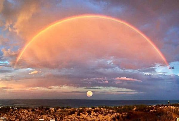 Rare Coincidences sunset moon picture