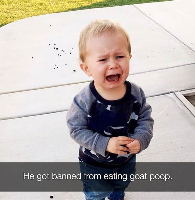 Reasons That Kids Had Major Meltdowns goat poop