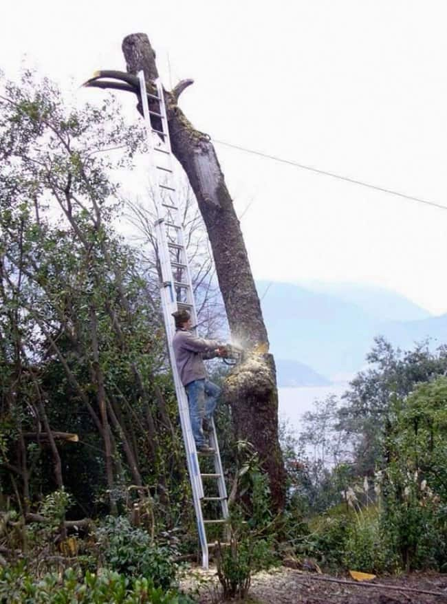 Reasons Why Women Live Longer Than Men chopping tree
