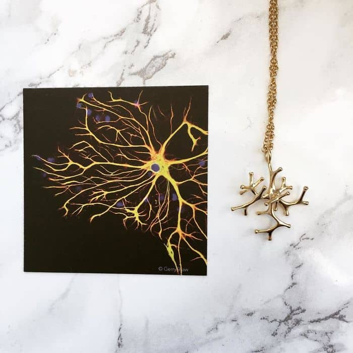 Science Inspired Jewelry Pieces astrocyte necklace