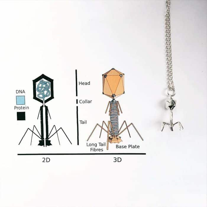 Science Inspired Jewelry Pieces backteriophage necklace