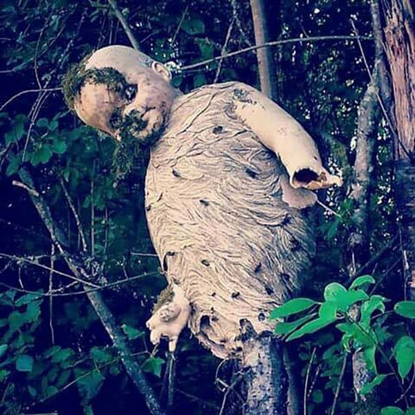 Terrifying Pictures Of Nature wasp nest doll