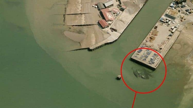 interesting-things-that-were-found-on-google-maps