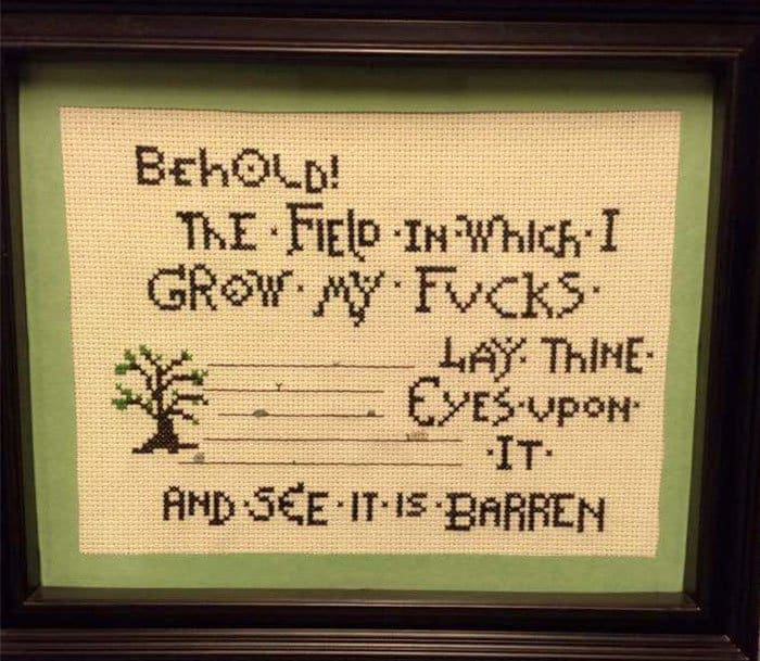 Amusing Cross Stitches behold the field