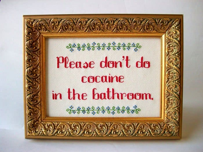 Amusing Cross Stitches please dont do in the bathroom