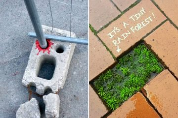 Awesome Acts Of Vandalism