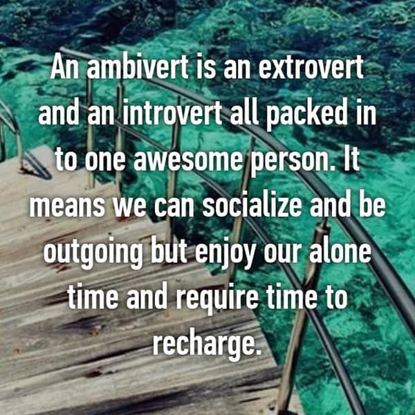 Confessions From Ambiverts awesome person