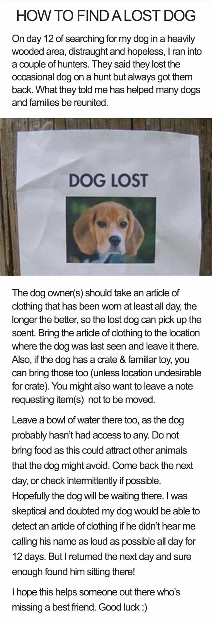 Genius Life Hacks how to find a lost dog