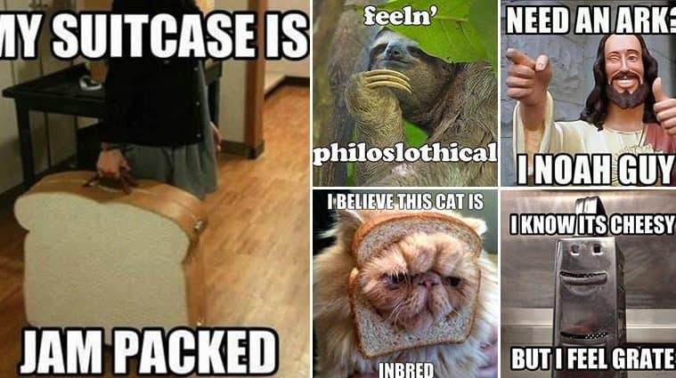 Hilarious Pun-Filled Images