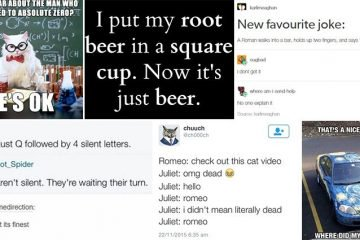 Jokes Which Are Smart And Stupid