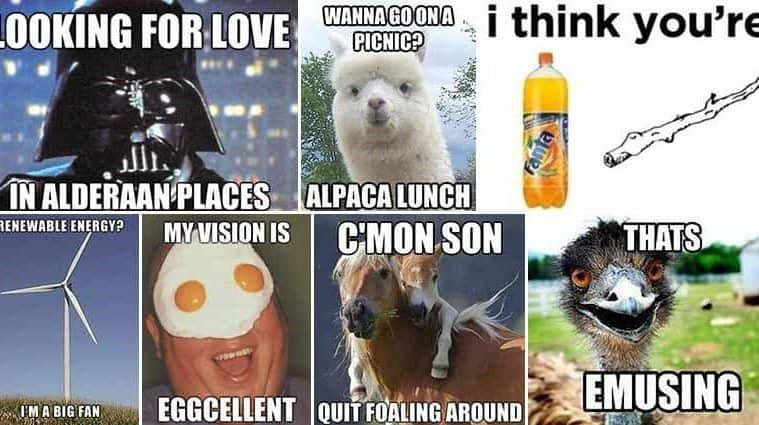 Pun-Filled Images To Brighten Up Your Day