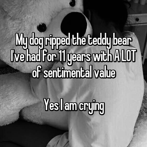 Reveal The Most Priceless Things They Have Lost teddy bear