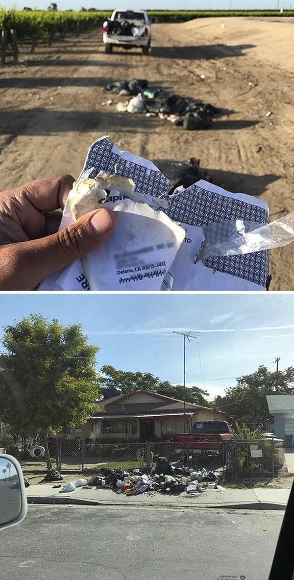 Revenge Stories illegal dumping