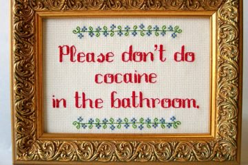 amusing cross stitches