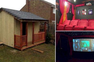 Amazing DIY Home Theater