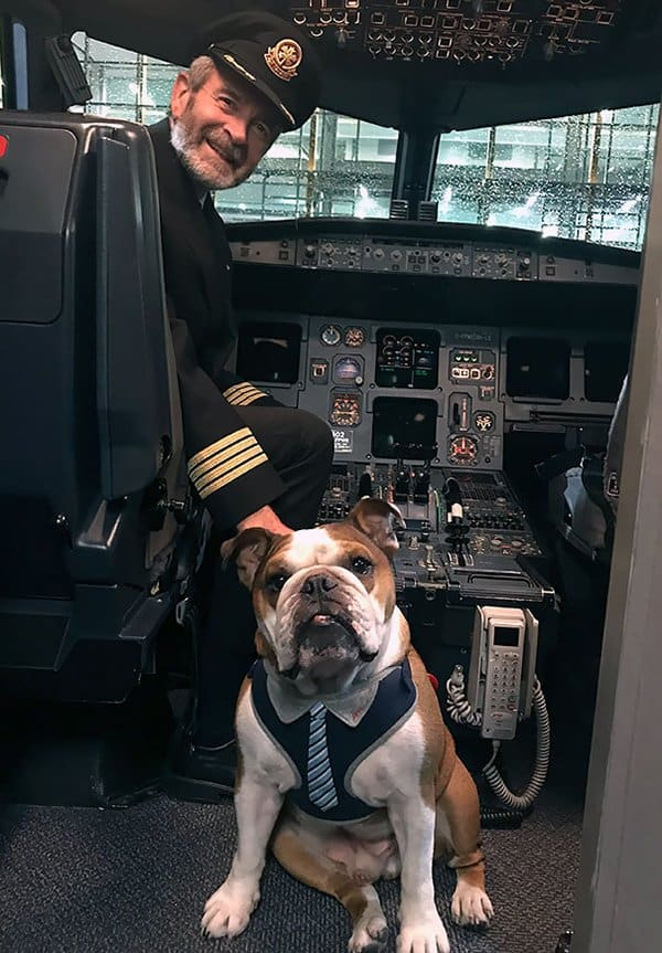 Animals On Flights bentley meeting captain