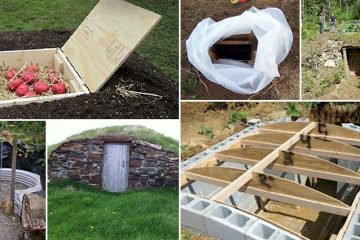Creative Root Cellars That Will Make You Want To Build Your Own